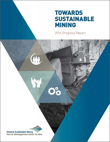 Towards Sustainable Mining Progress Report